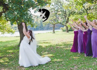 Brides Throwing Cats Tumblr Spose Matrimonio Lancio Gatti Bouquet Damigelle