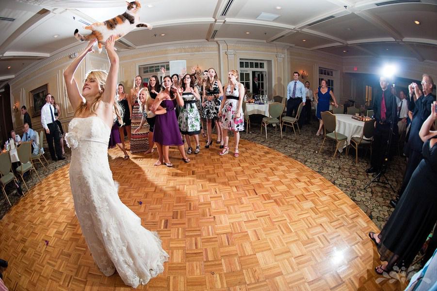 Brides Throwing Cats Tumblr Spose Matrimonio Lancio Gatti Bouquet Sposo