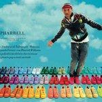 Adidas Originals Superstar Supercolor Pharell Williams Scarpe