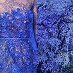 Liliya Hudyakova Incontro Arte Moda Abiti Vestiti Stilisti Paesaggi Natura (2)