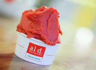 gelati-naturali-Aldmangiami-Coppetta-lampone